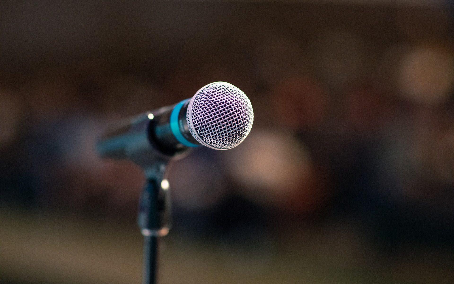 Diversity Speaker